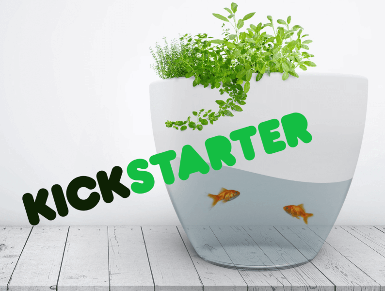 Vegua Aquaponics on Kickstarter