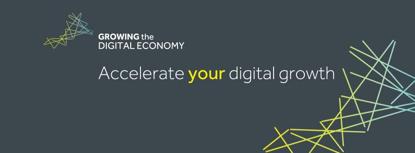 Growing the Digital Economy