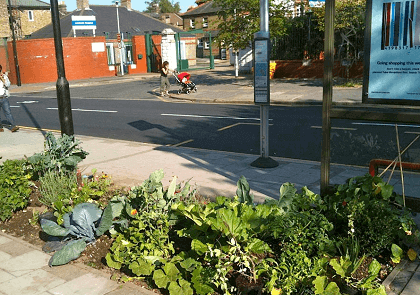 The Edible Bus Stop