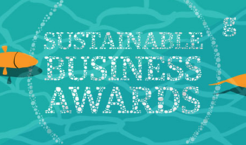the Guardian Sustainable Business Awards 2013